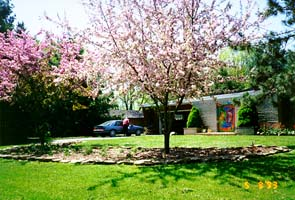 Turtle Moon Studios - our front yard. ©Susan Shie 2003.